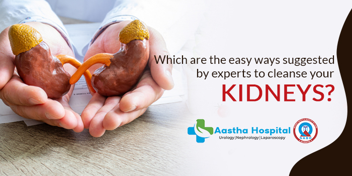 Which are the easy ways suggested by experts to cleanse your kidneys?